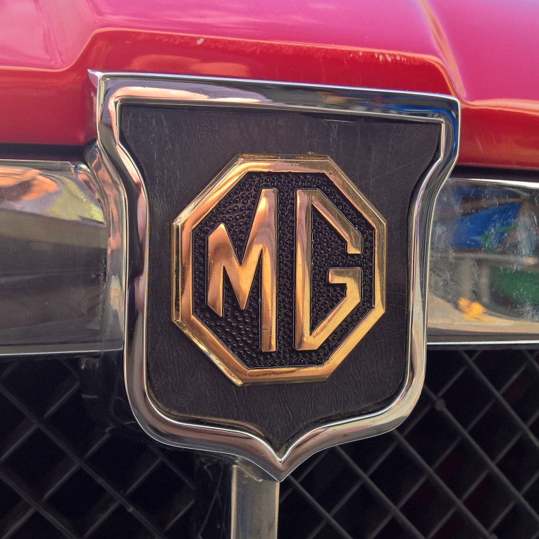 Jubilee Year Customised Gold Grill Badge